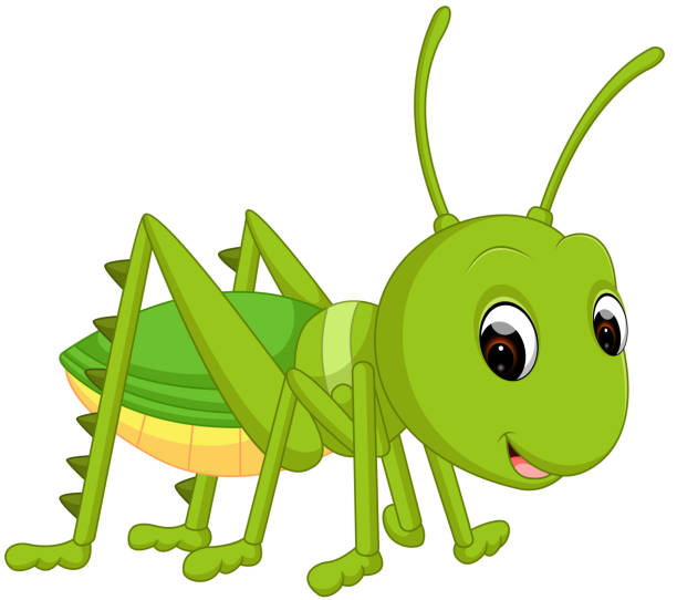 cartoon funny cricket - cricket stock illustrations, clip art, cartoons, & icons