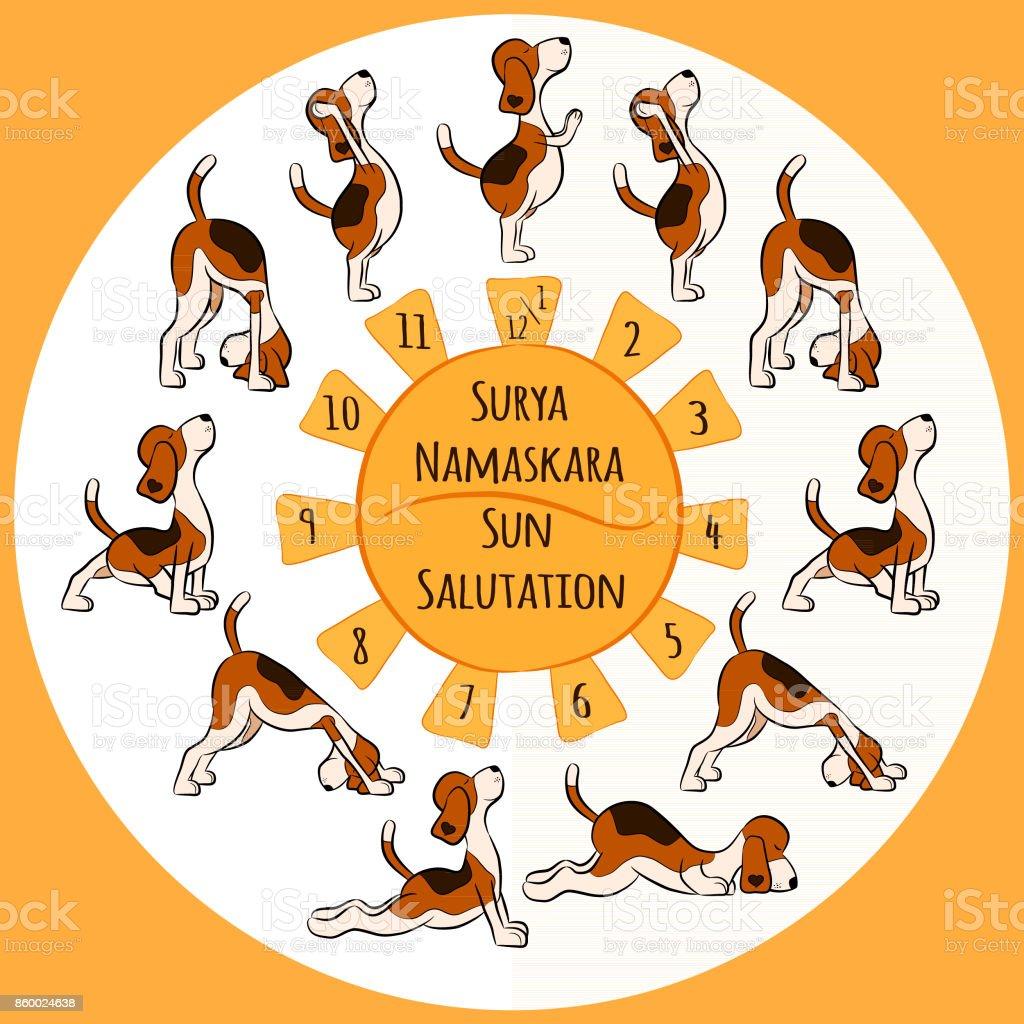 Cartoon Funny Dog Doing Yoga Position Of Surya Namaskara Stock Illustration Download Image Now Istock