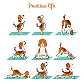 cartoon funny dog doing yoga position of Surya Namaskara