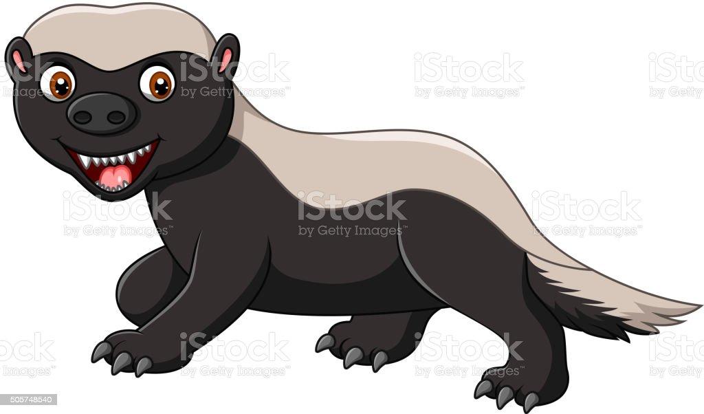 Cartoon funny honey badger isolated on white background vector art illustration