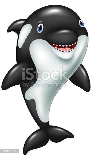Orca Whale Cartoon Cartoon Funny K...