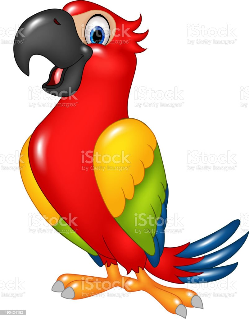 royalty free funny parrot clip art vector images illustrations rh istockphoto com parrot clipart gif parrot clipart black and white