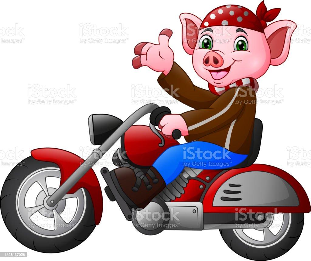 Dessin Anime Drole Cochon Conduisant Une Moto Vecteurs Libres De Droits Et Plus D Images Vectorielles De Bandana Istock