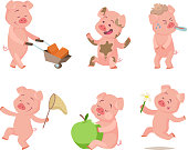 Cartoon funny pigs in action poses. Pig cartoon, animal character. Vector illustration