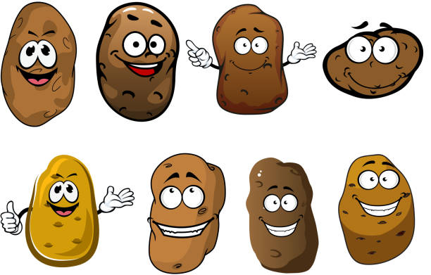 cartoon lustig lächeln, kartoffeln und gemüse - kartoffeln stock-grafiken, -clipart, -cartoons und -symbole