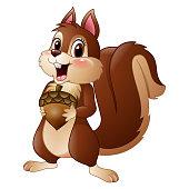Vector illustration of Cartoon funny squirrel holding pine cone