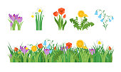 Cartoon Garden Flowers and Element Set. Vector