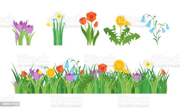 Cartoon garden flowers and element set vector vector id956341846?b=1&k=6&m=956341846&s=612x612&h=dfriqp2i7edyjbkz5mcoo7uk0sozavpm6hhaw9j jok=