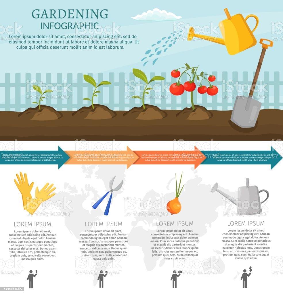 Les Outils De Jardinage Avec Photos infographie de jardinage avec des légumes et des outils de