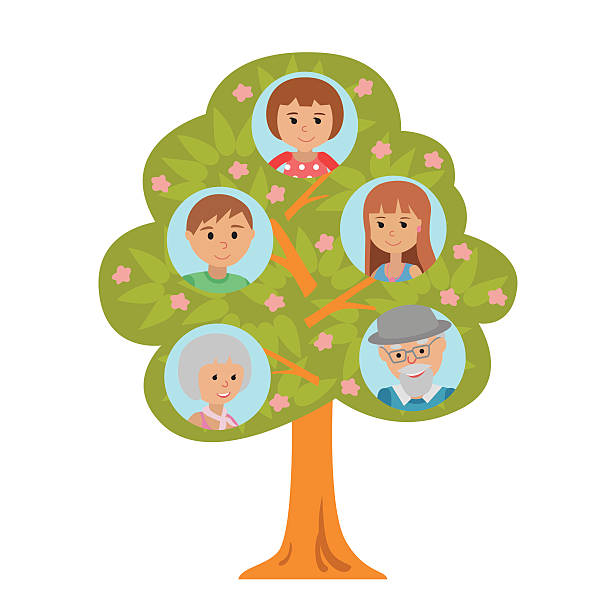 cartoon generation family tree flat style grandparents parents and child. - old man pic cartoons stock illustrations, clip art, cartoons, & icons