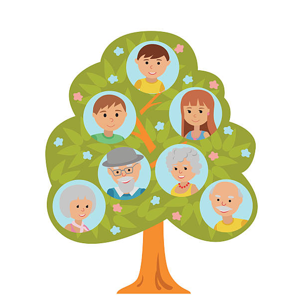cartoon generation family tree grandparents parents child white background. - old man pic cartoons stock illustrations, clip art, cartoons, & icons