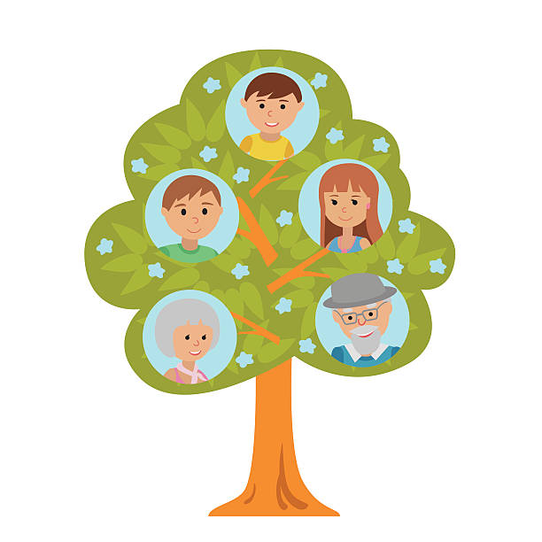 cartoon generation family tree in flat style - old man pic cartoons stock illustrations, clip art, cartoons, & icons