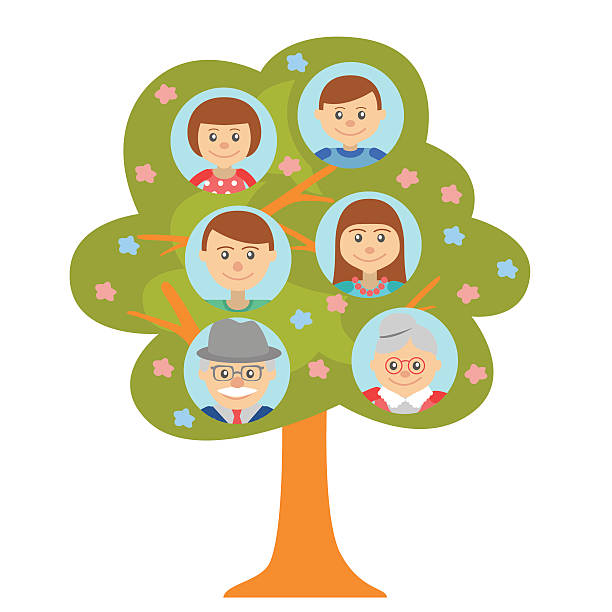 cartoon generation family tree in flat style white background. - old man pic cartoons stock illustrations, clip art, cartoons, & icons