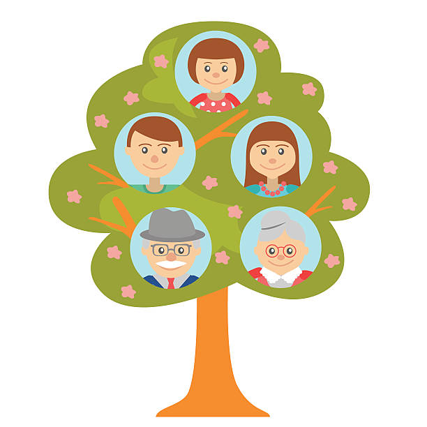 cartoon generation family tree isolated on white - old man pic cartoons stock illustrations, clip art, cartoons, & icons