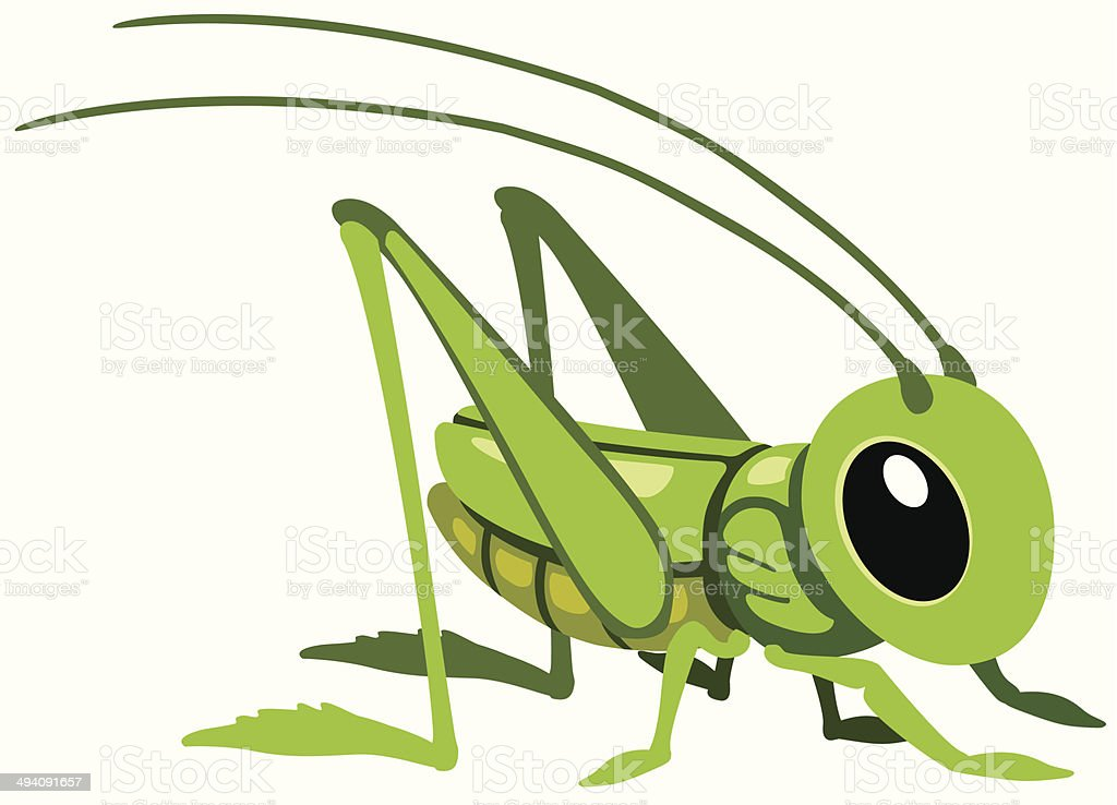 cartoon grasshopper vector art illustration