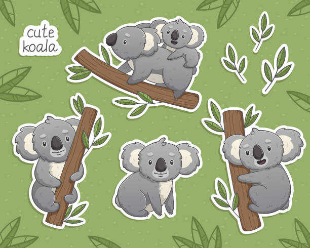 cartoon gray koala in differet poses - koala stock illustrations