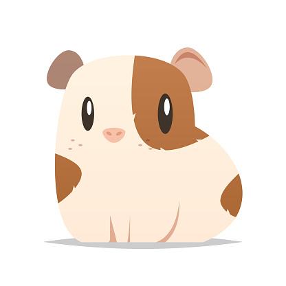 Cartoon guinea pig vector isolated illustration