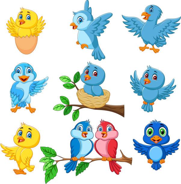 ilustrações de stock, clip art, desenhos animados e ícones de cartoon happy birds collection set - bills couple