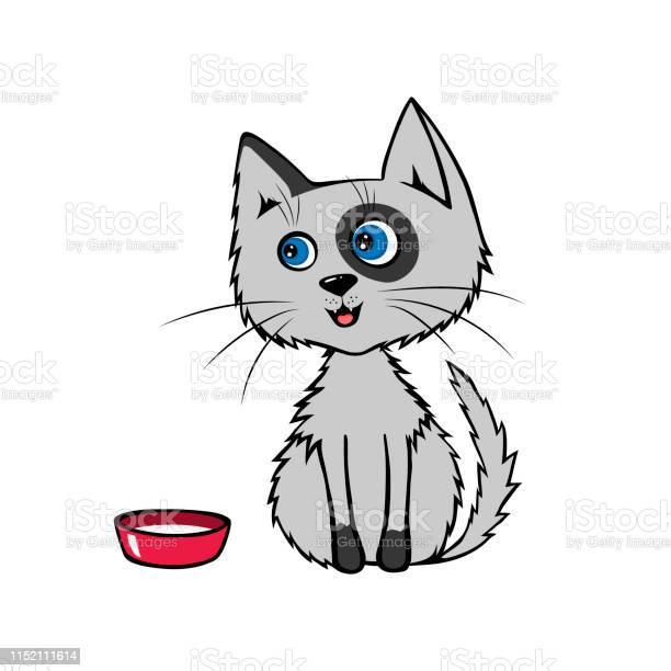 Cartoon happy gray cat sits near a bowl of milk vector illustration vector id1152111614?b=1&k=6&m=1152111614&s=612x612&h=x5zwc4yfhaoth3rvlrblqkbowqito580 1 aaldyqgo=