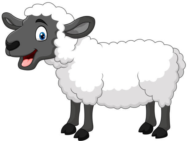 Best Sheep Illustrations, Royalty-Free Vector Graphics ...