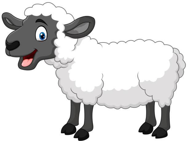 stockillustraties, clipart, cartoons en iconen met cartoon happy sheep posing isolated on white background - schaap