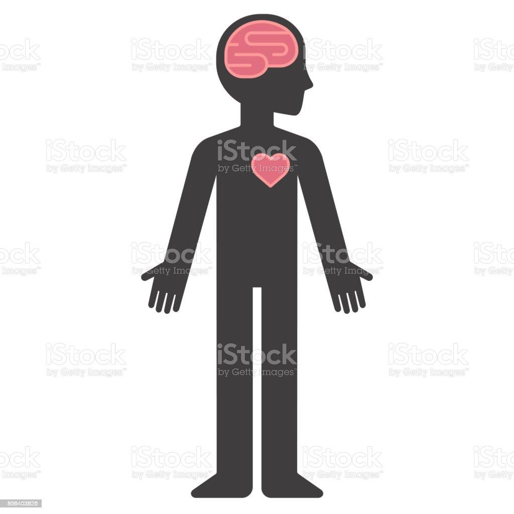 Dessin Corps Humain Organes silhouette de corps humain du dessin animé avec le cerveau et le