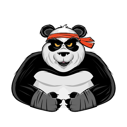 cartoon illustration of an angry panda fighter