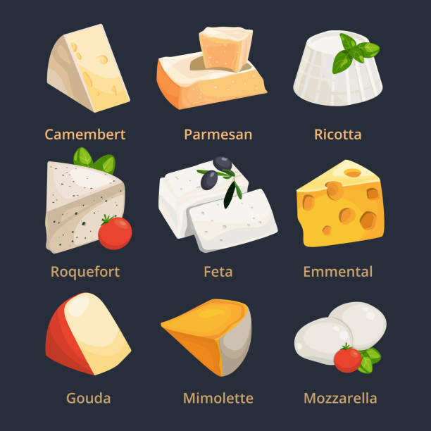 Cartoon illustration of different cheeses. Vector pictures set Cartoon illustration of different cheeses. Vector pictures set cheese camembert and parmesan, ricotta and mimolette mozzarella stock illustrations