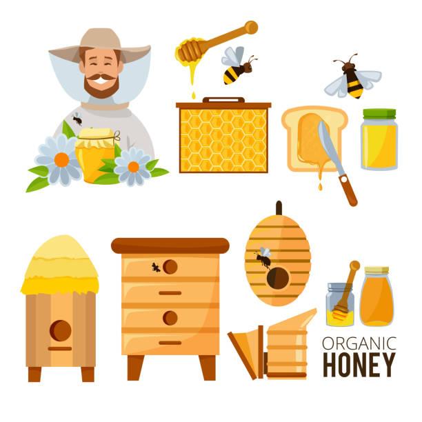 Cartoon illustrations set of beekeeper, beehive and bees Cartoon illustrations set of beekeeper, beehive and bees. Beehive and natural honey vector beekeeper stock illustrations