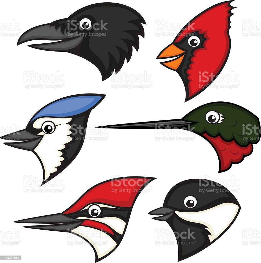 A cartoon image of different birds vector art illustration