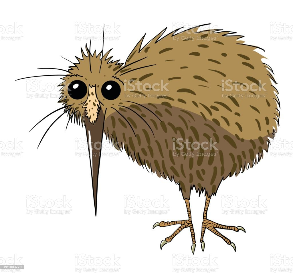 Cartoon Image Of Kiwi Bird Stock Vector Art & More Images of Animal ...