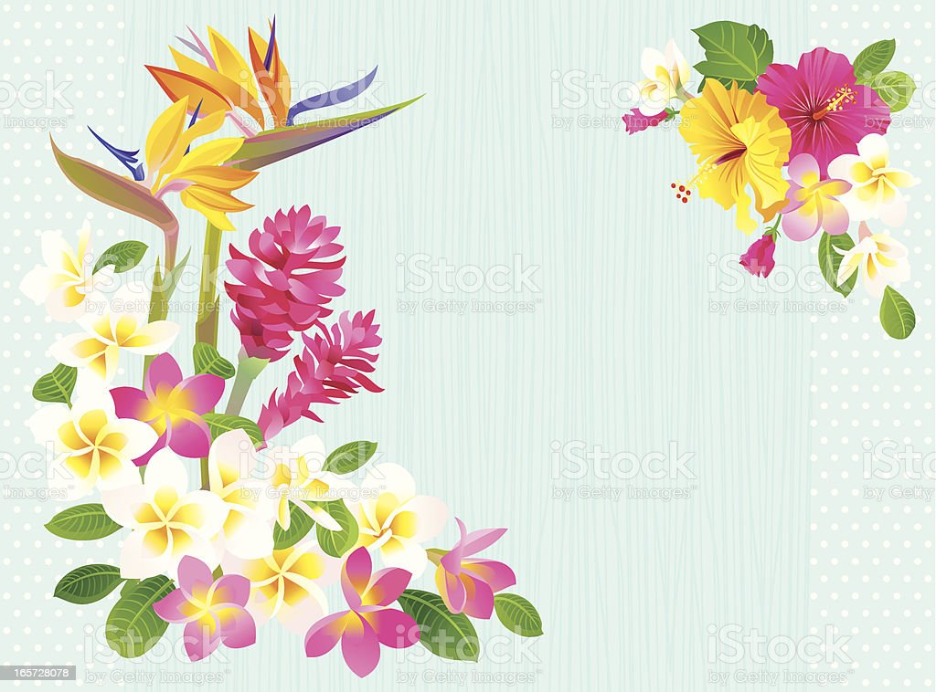 Cartoon image of tropical flower background vector art illustration
