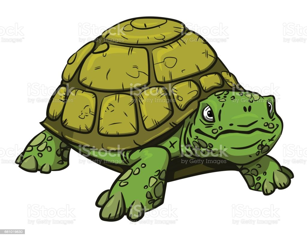 Cartoon image of turtle royalty-free cartoon image of turtle stock vector art & more images of alligator