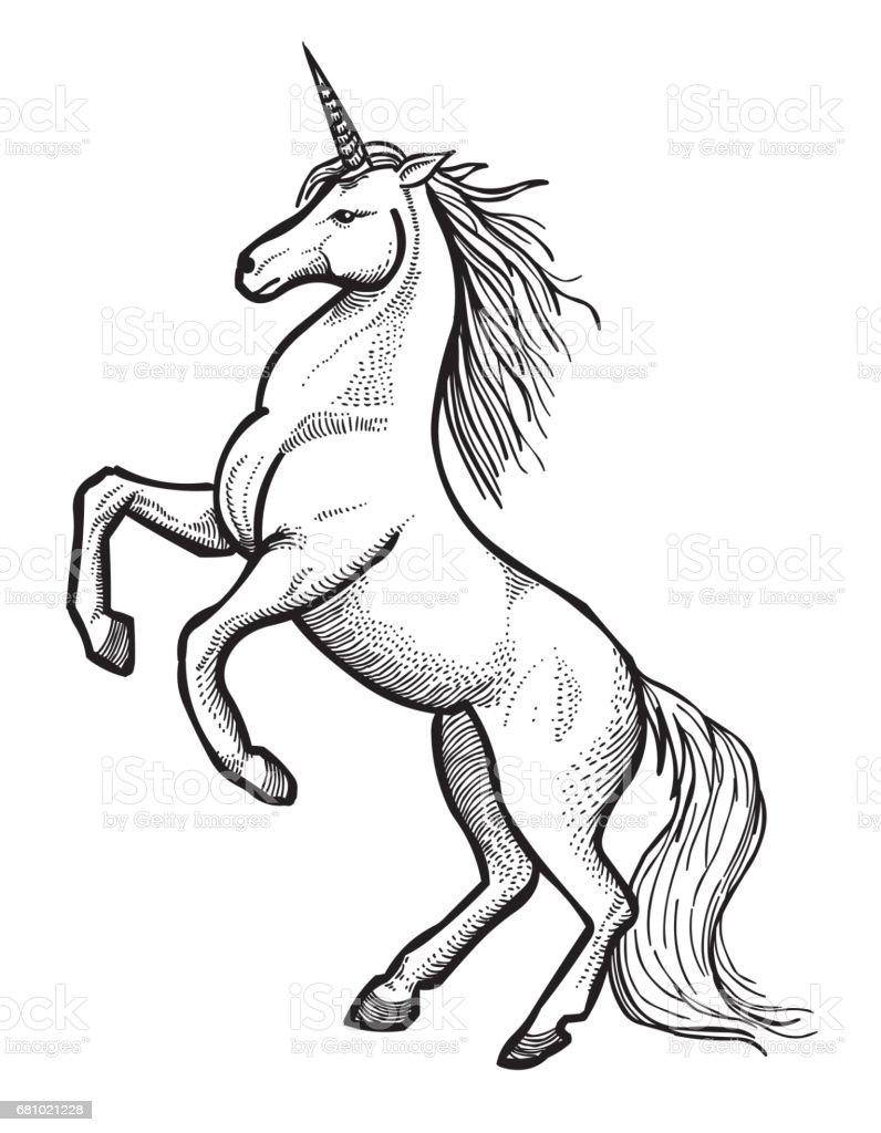 Uncategorized Drawing Of Unicorn cartoon image of unicorn stock vector art 681021228 istock royalty free art