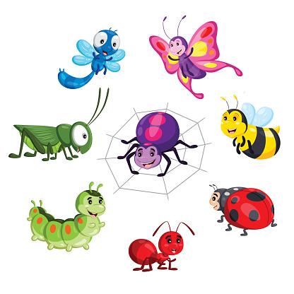Cartoon insect set.
