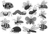 Bugs and insects of bee or ladybug or ladybird, fly and wasp or bee and bumblebee, butterfly and caterpillar or hornet beetle. Moth and ant, dragonfly and spider. Cartoon vector icons set
