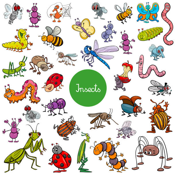 cartoon insects animal characters big set - bugs stock illustrations, clip art, cartoons, & icons