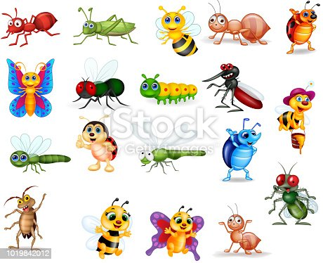 Vector illustration of Cartoon insects collection set