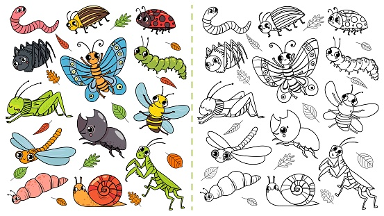 Cartoon Insects Color Painting Game Draw Cute Insect With ...