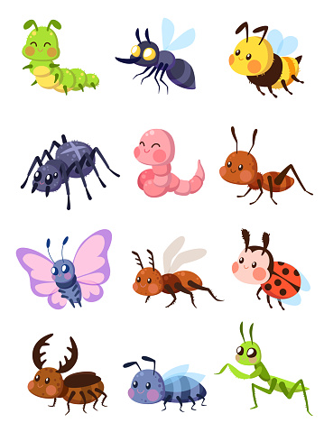 Cartoon insects. Cute grasshopper and ladybug, caterpillar and butterfly. Mosquito and spider. Fly, ant and mantis vector set