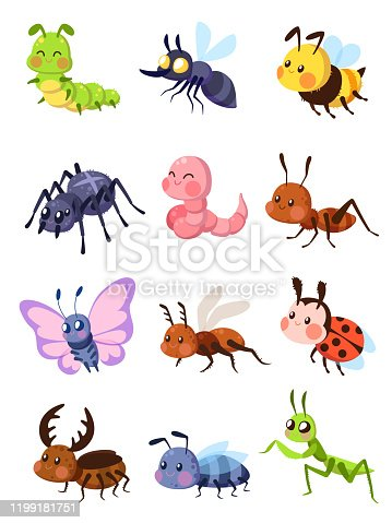 Cartoon insects. Cute grasshopper and ladybug, caterpillar and butterfly. Mosquito and spider. Fly, ant and mantis vector comic set