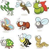 A Set of Cartoon Insect: