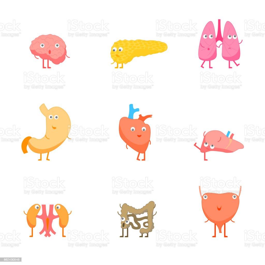 Ilustración de Dibujos Animados órganos Internos Emociones Divertido ...