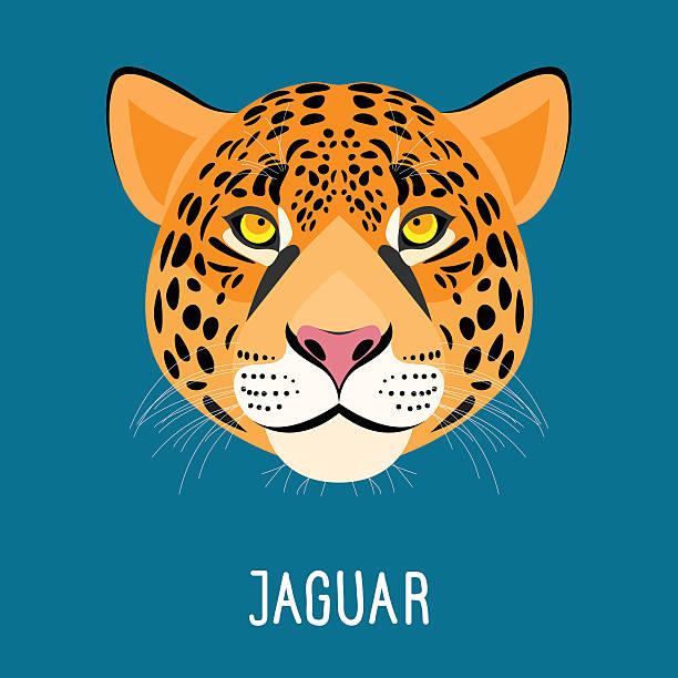 cartoon jaguar portrait isolated on blue. - jaguar stock illustrations