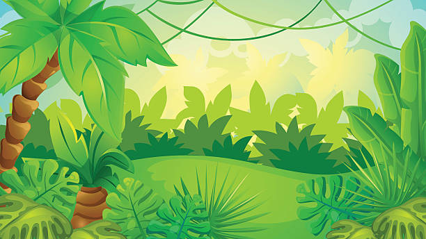 Best Tropical Rainforest Illustrations, Royalty-Free ...