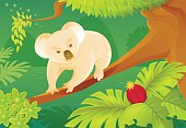 Cartoon koala on a jungle background