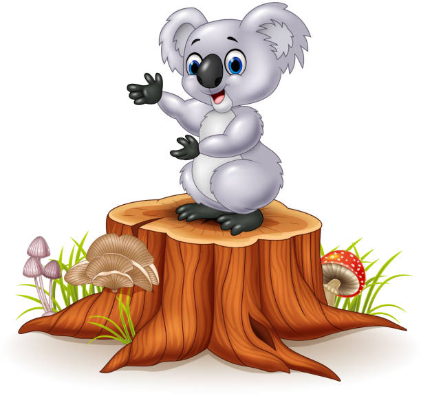 Top 60 Stuffed Koala Bear Clip Art, Vector Graphics and ...