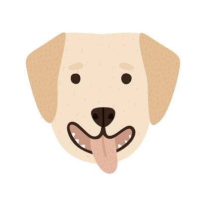 Cartoon labrador retriever dog breed portrait isolated on white. Doggy face drawn by hand.