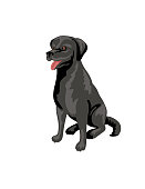 Cartoon Labrador Retriever Dog