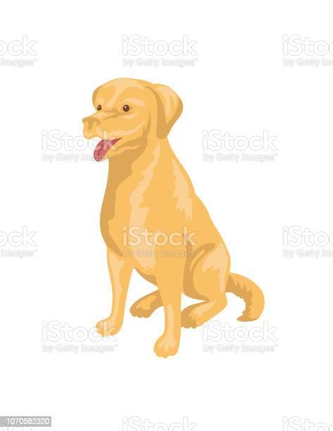 Cartoon labrador retriever dog vector id1070582320?b=1&k=6&m=1070582320&s=612x612&h=thao74ou29v d9y8mw3mamwvha0gzytebhsh 0vd4 m=